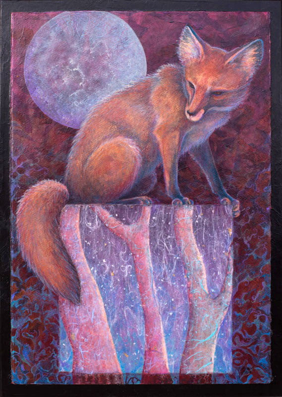 Fox sitting on a snowy square form under full moon by Robyn Ryan